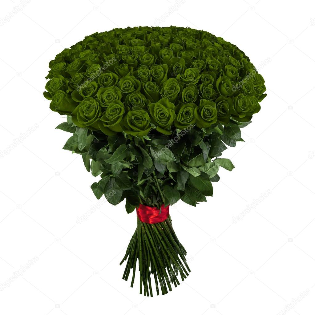 Green rose. Isolated large bouquet of 101 rose on white