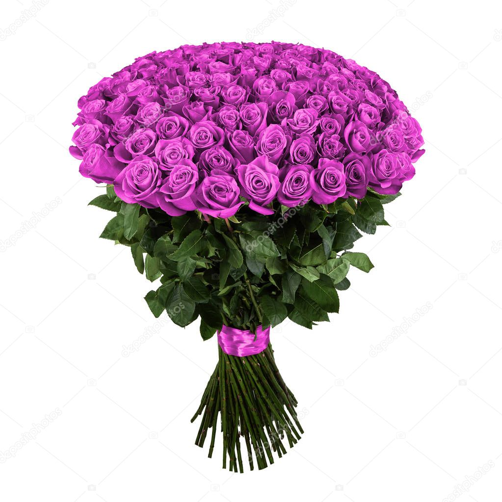 Pink rose. Isolated large bouquet of 101 rose on white