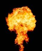 Explosion - fire mushroom. Mushroom cloud fireball from an explosion