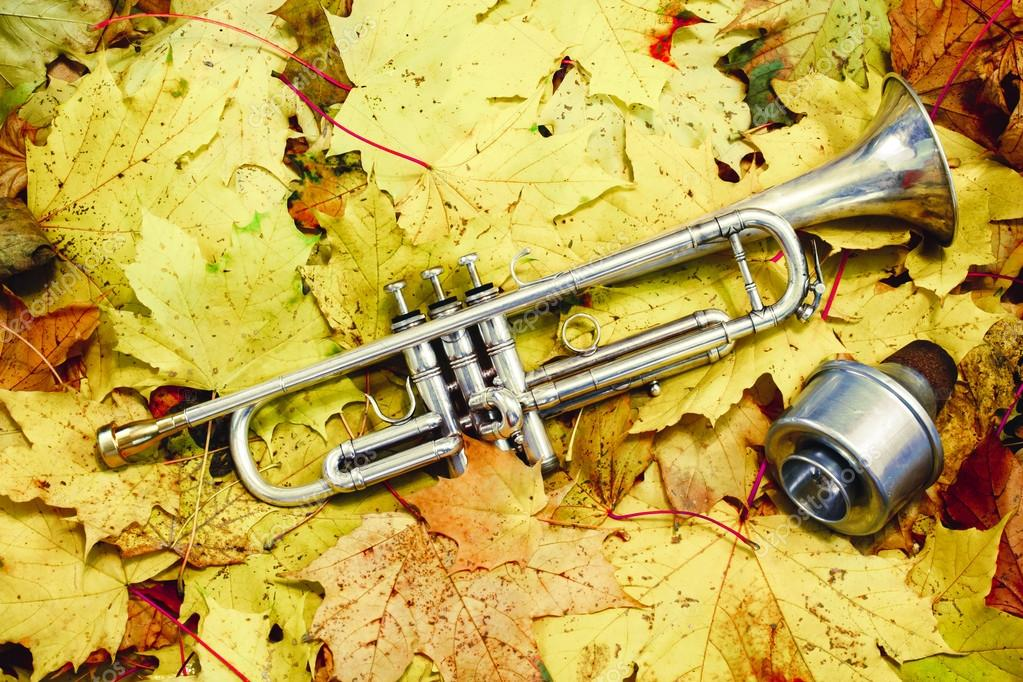 trumprt  and autumn