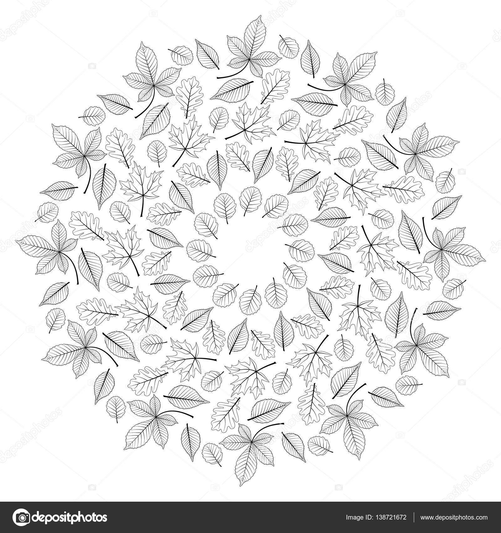 Kleurplaten Herfst Mandala.Vector Van De Zwarte En Witte Ronde Herfst Lommerrijke Mandala