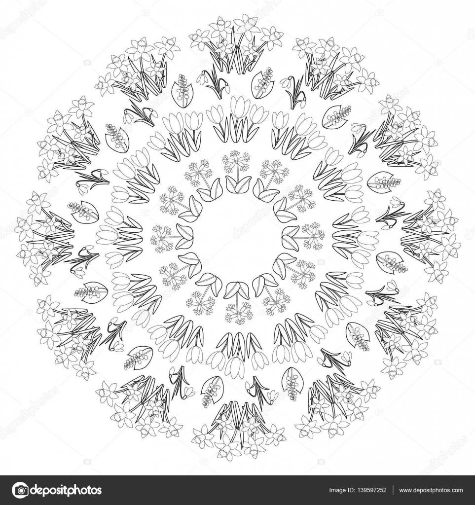 Vektor Schwarze Und Weiße Runde Frühling Blumen Mandala