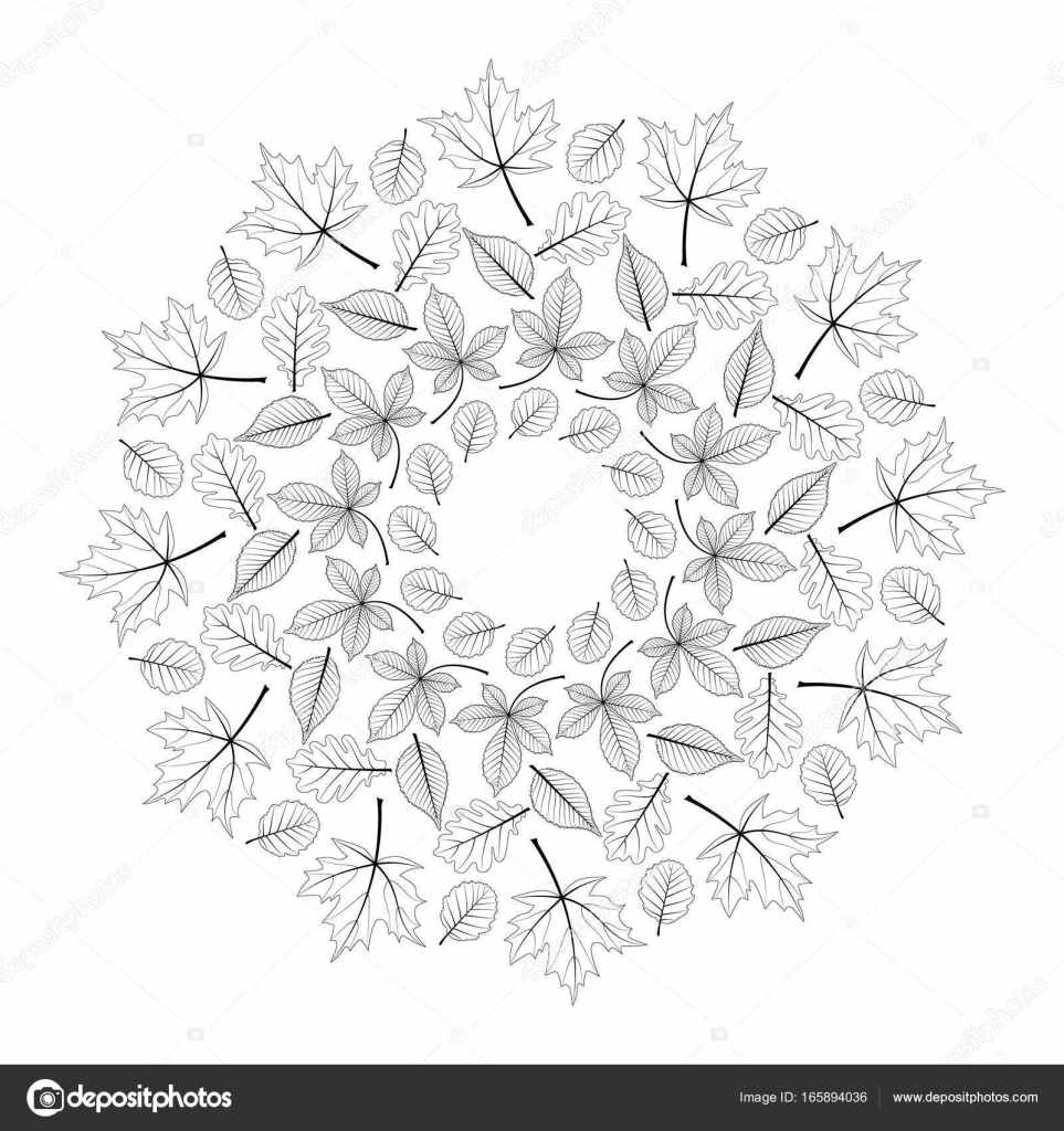 Kleurplaten Herfst Mandala.Vector Zwart Wit Ronde Herfst Mandala Met Van De Esdoorn Eik Beuk