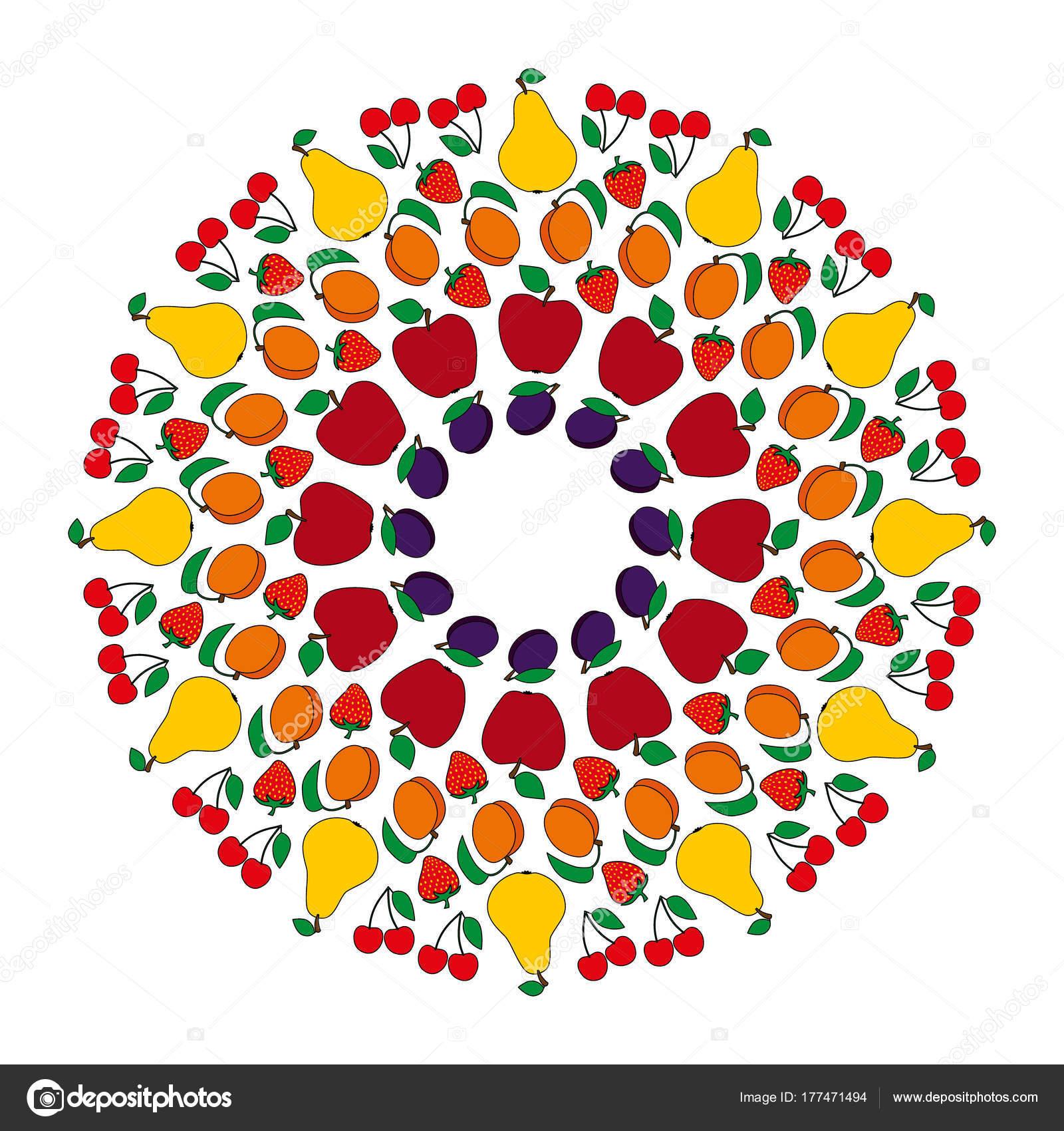 Vektör Renkli Dairesel Meyveli Mandala Elma Armut Kayısı Kiraz