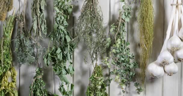 bylinková bazalka, pažitka, levandule, oregáno, petržel, rozmarýn, slanina pověšená na suchý povrch proti vinobraní nebo korálkovému prknu