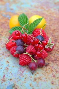 pile of fresh raspberries