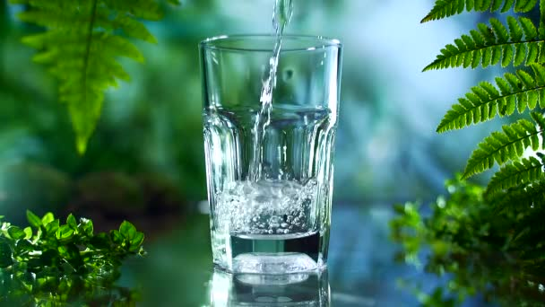 spring water is poured into a glass. Slow motion. healthy natural lifestyle. on nature background. pure water between plants. close up. Isolated