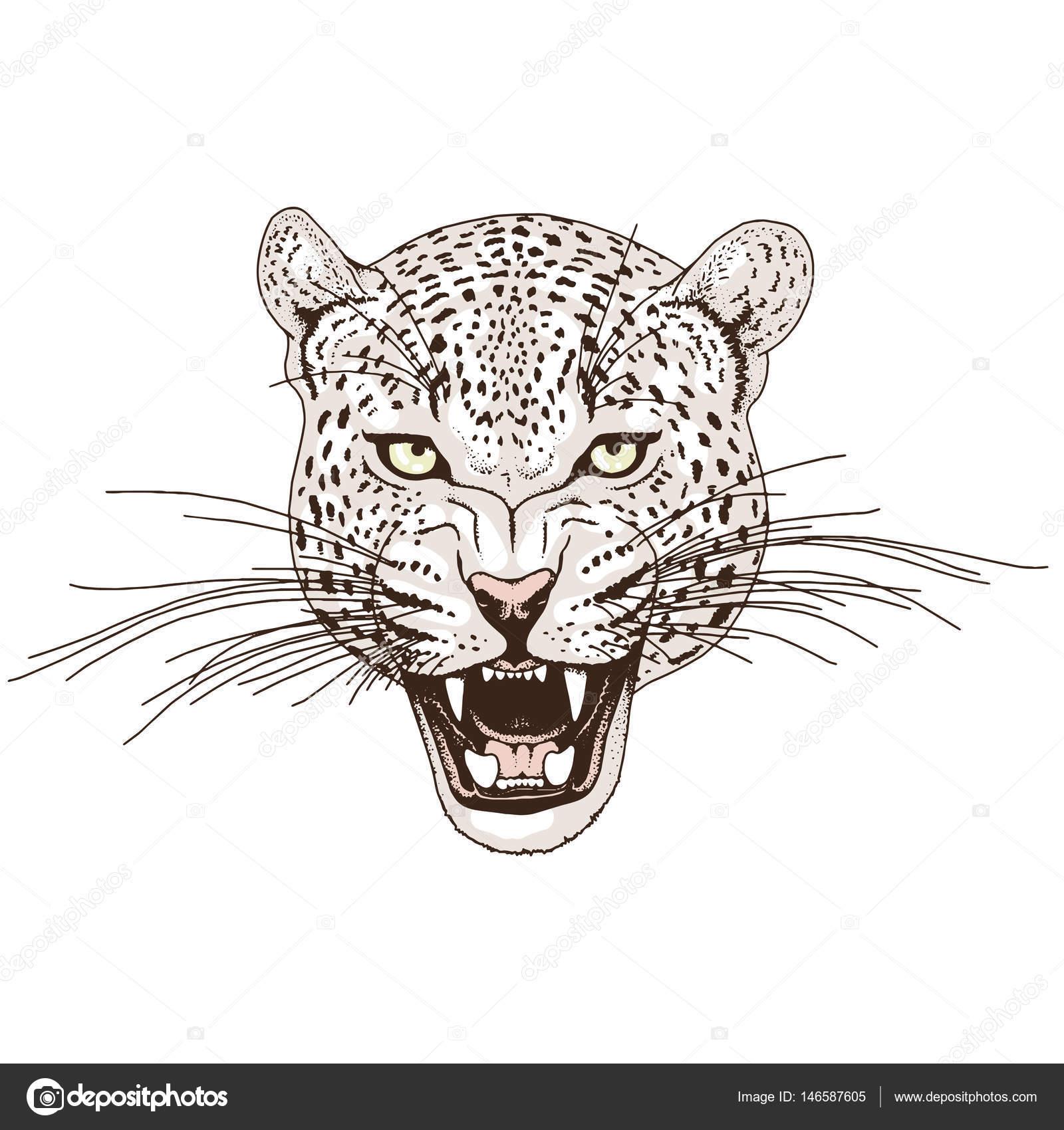 Leopar dövmelerin anlamı nedir