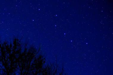 The Big Dipper in a spring night sky.