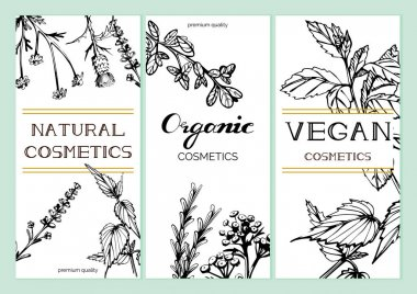 Flyers templates with flowers and herbs