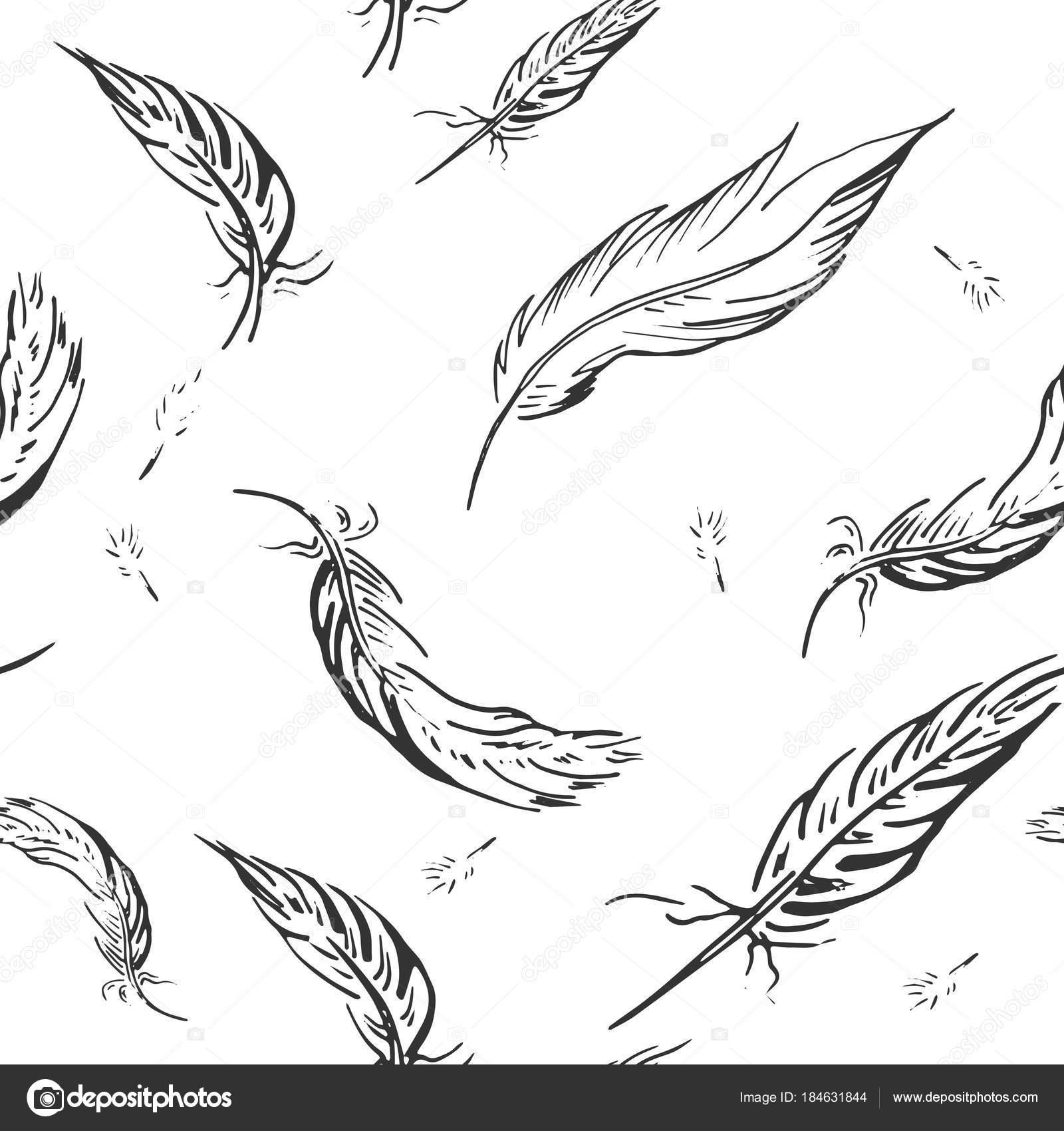 黒と白の羽のベクトル イラスト柄手描きスタイル ストックベクター