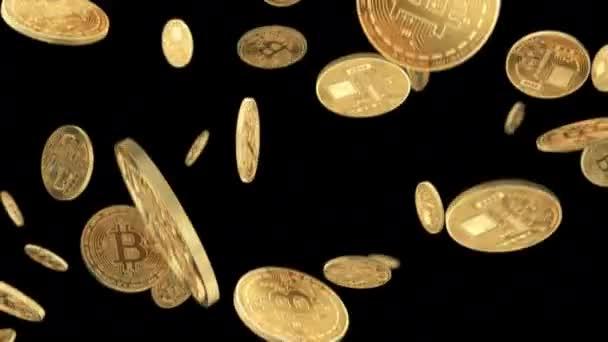 video rapid de câștiguri bitcoin