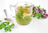 Hot fresh oregano tea, herbs