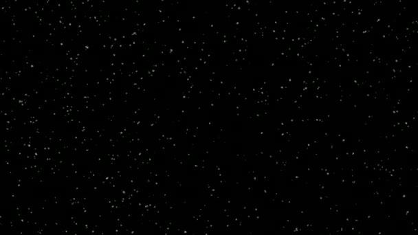 padající sníh izolovaný na černém pozadí, sněhová bouře, vánice, noc, alfa, zimní říše divů, zimní scéna, zimní dovolená, sněhové vločky, sněhové vločky