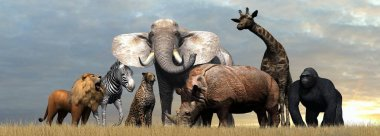 Various wild animals of Africa on sky background