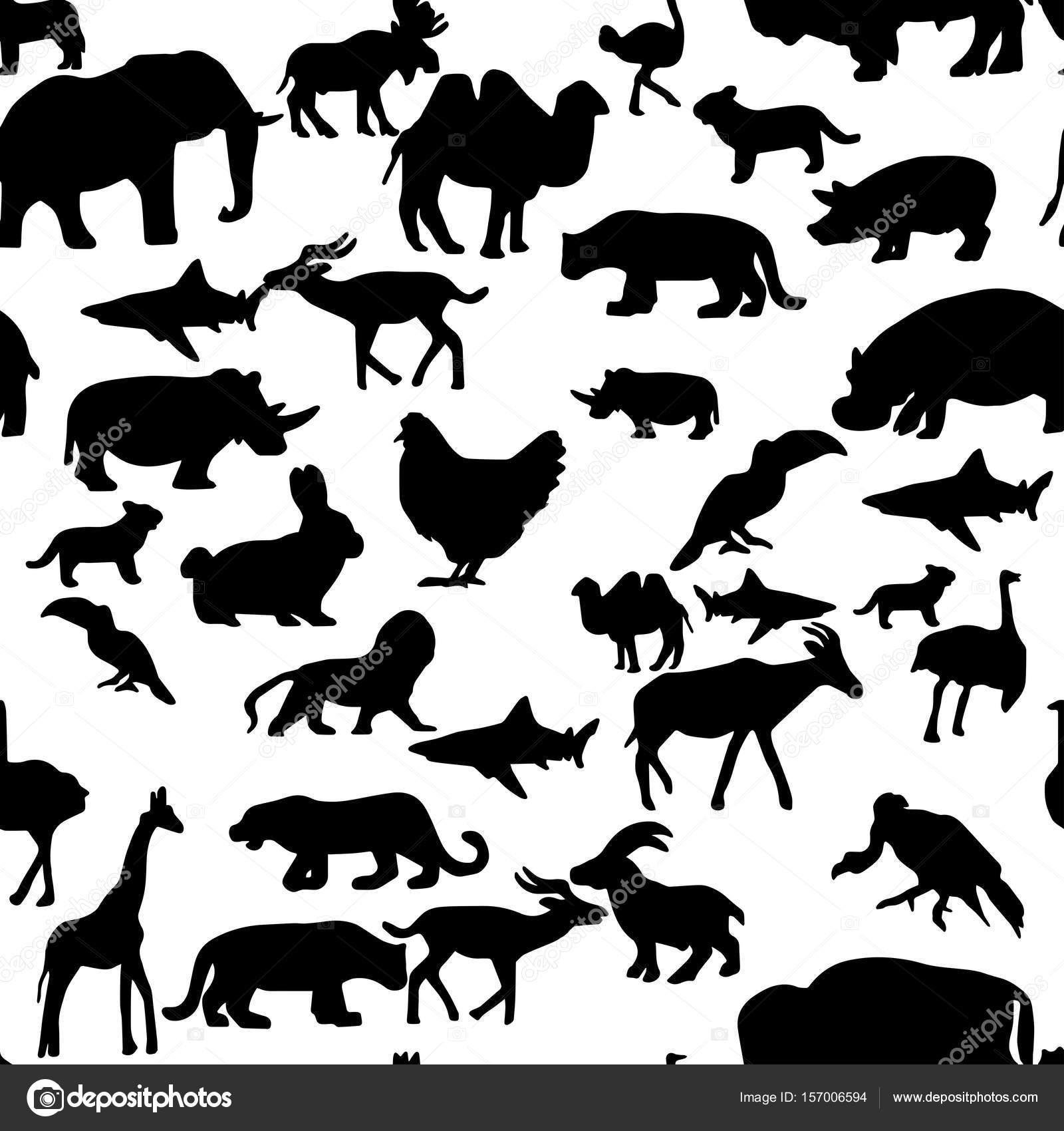 Fondo: siluetas de animales sin | silueta de animales fauna y flora ...