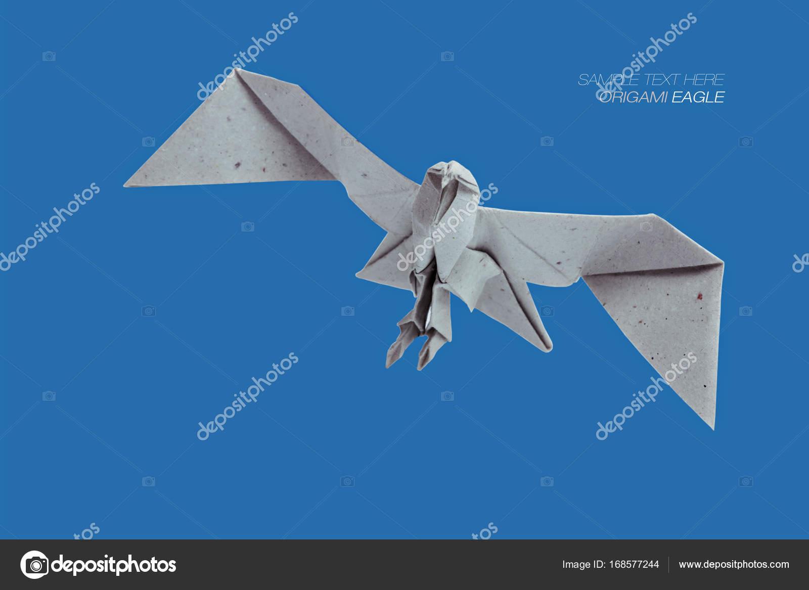 Paper Eagle, Easy Origami for Kids, Basic origami, Simple Origami for Be...  | Easy origami for kids, Origami eagle, Origami easy | 1167x1600
