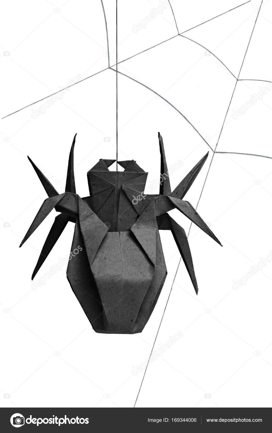 araignée origami isolée — photographie mandrixta © #169344006
