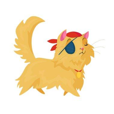 pirate cat illustration