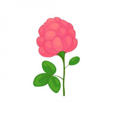 clover flower icon