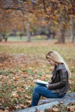 Young woman reading a book in a park in autumn stock vector