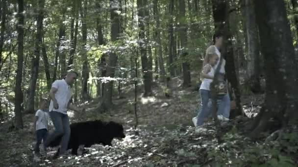 Family On Hiking Adventure Through Forest. Happy family of mother, father and daughters walking in coniferous forest holding hands. Parents showing beautiful trees to kid. Children pick mushrooms