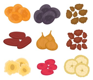 Dried fruits set, flat style. Raisins,  apricots, prunes isolated on a white background. Vector illustration, clip art