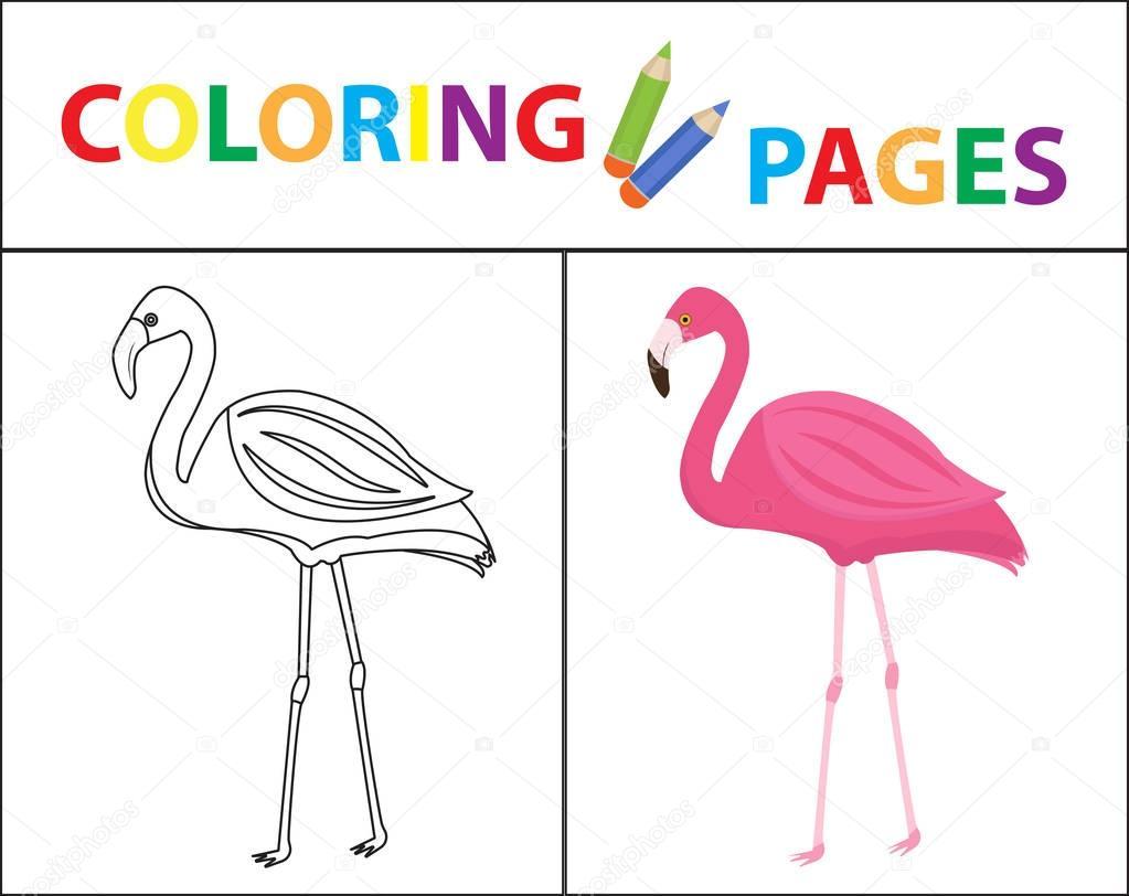 Boyama Kitabı Sayfası Flamingo Kroki Anahat Ve Renk Sürümü