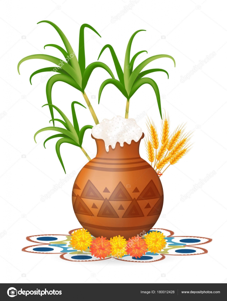 Happy Pongal Greeting Card Holiday India Festival Of Harvesting