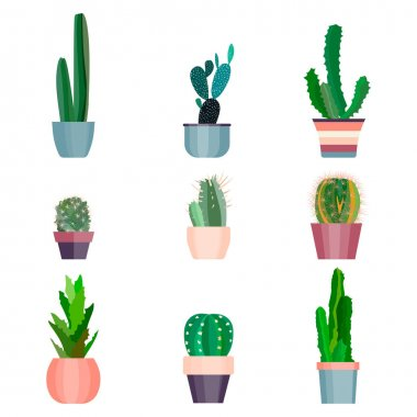Set of high quality hand painted watercolor elements for your design with succulent plants,cactus and more.Perfect   project,wedding,greeting card,photos,blogs,wreaths,pattern