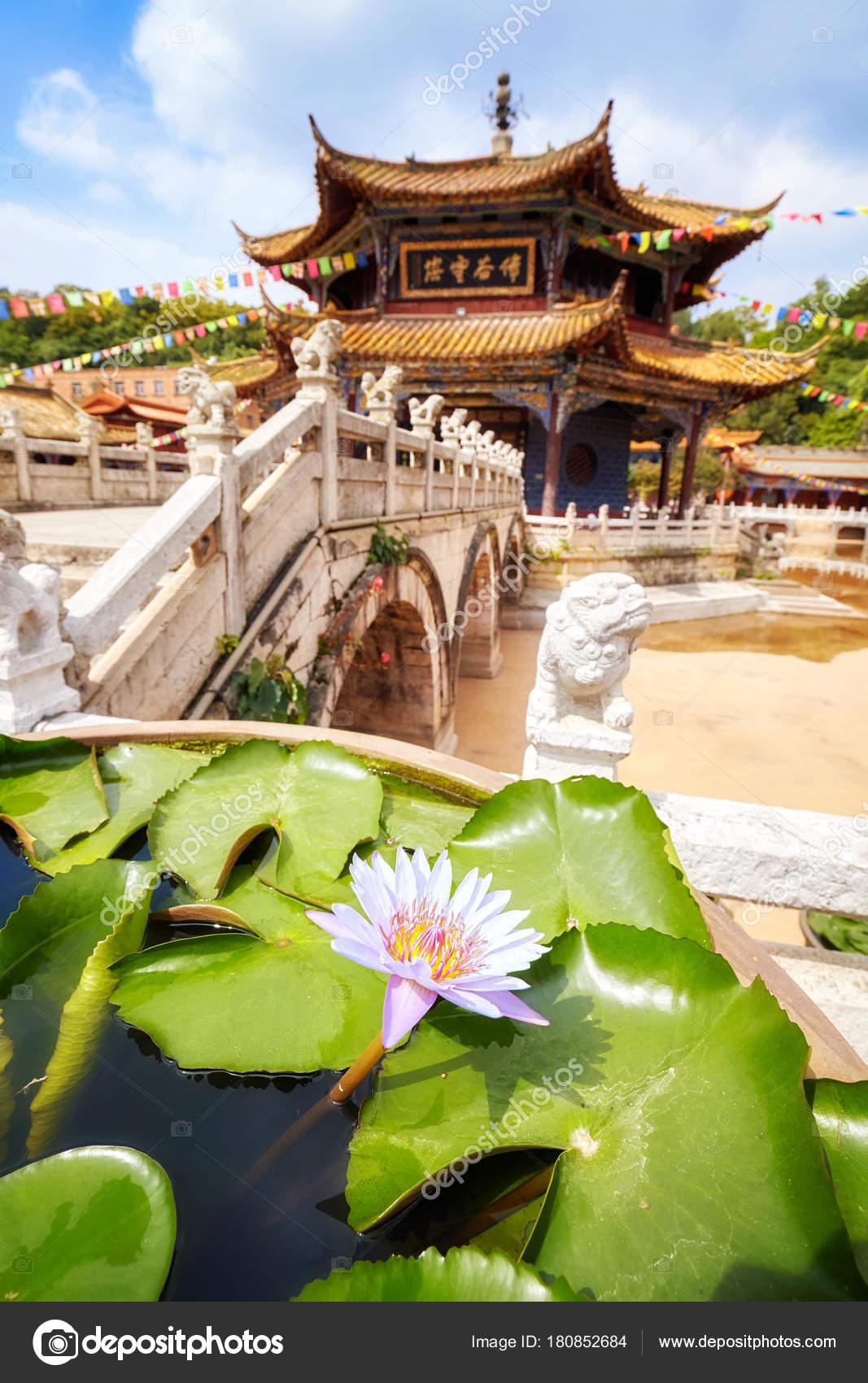 Lotus Flower In The Yuantong Temple In Kunming China Stock