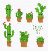 legrační kaktus rostliny