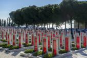5 Feb 2018, Canakkale (Dardanelles) Turkish martyrs memorial military cemetery in Gallipoli, Canakkale, Turkey