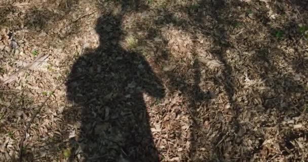 Egy sétáló ember árnyéka az erdő levelein tavasszal.