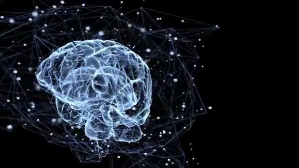 Animace ilustrující neuronálních spojení