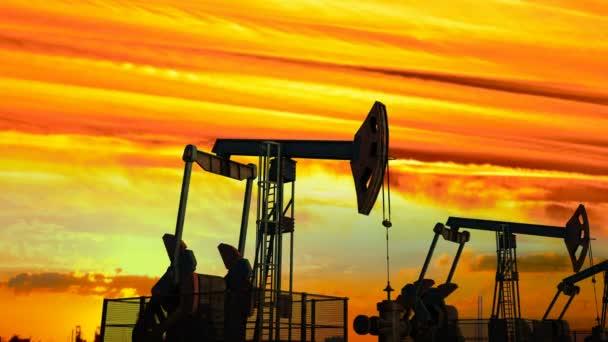 looped move along oil pump jacks against dusk
