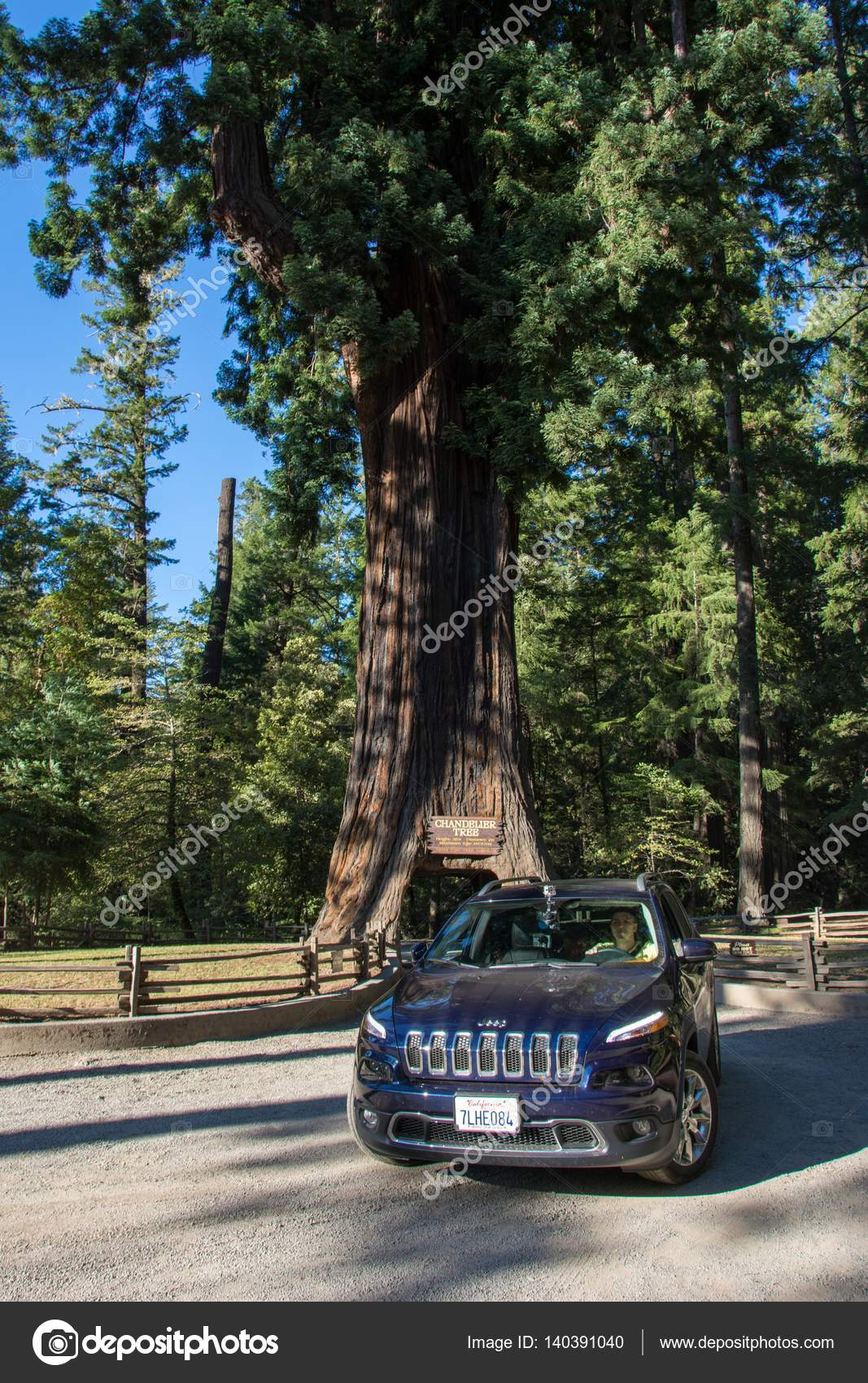 California usa june 17 2015 jeep cherokee rides through the california usa june 17 2015 jeep cherokee rides through the chandelier tree in leggett photo by maksershov arubaitofo Choice Image