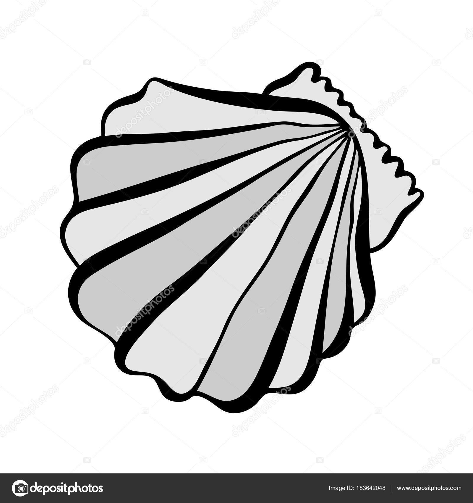 Ilustración de vector blanco y negro con conchas marinas — Archivo ...