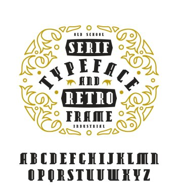 Stock vector set of serif font