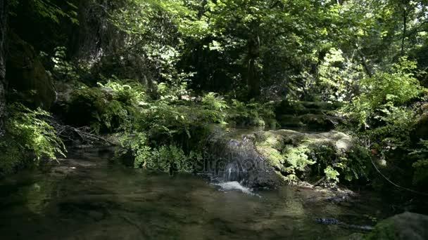 Malý vodopád a stream v přírodě.