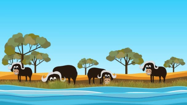 This  is a funny buffalo cartoon background