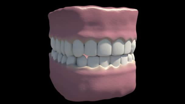 This is a dental overview