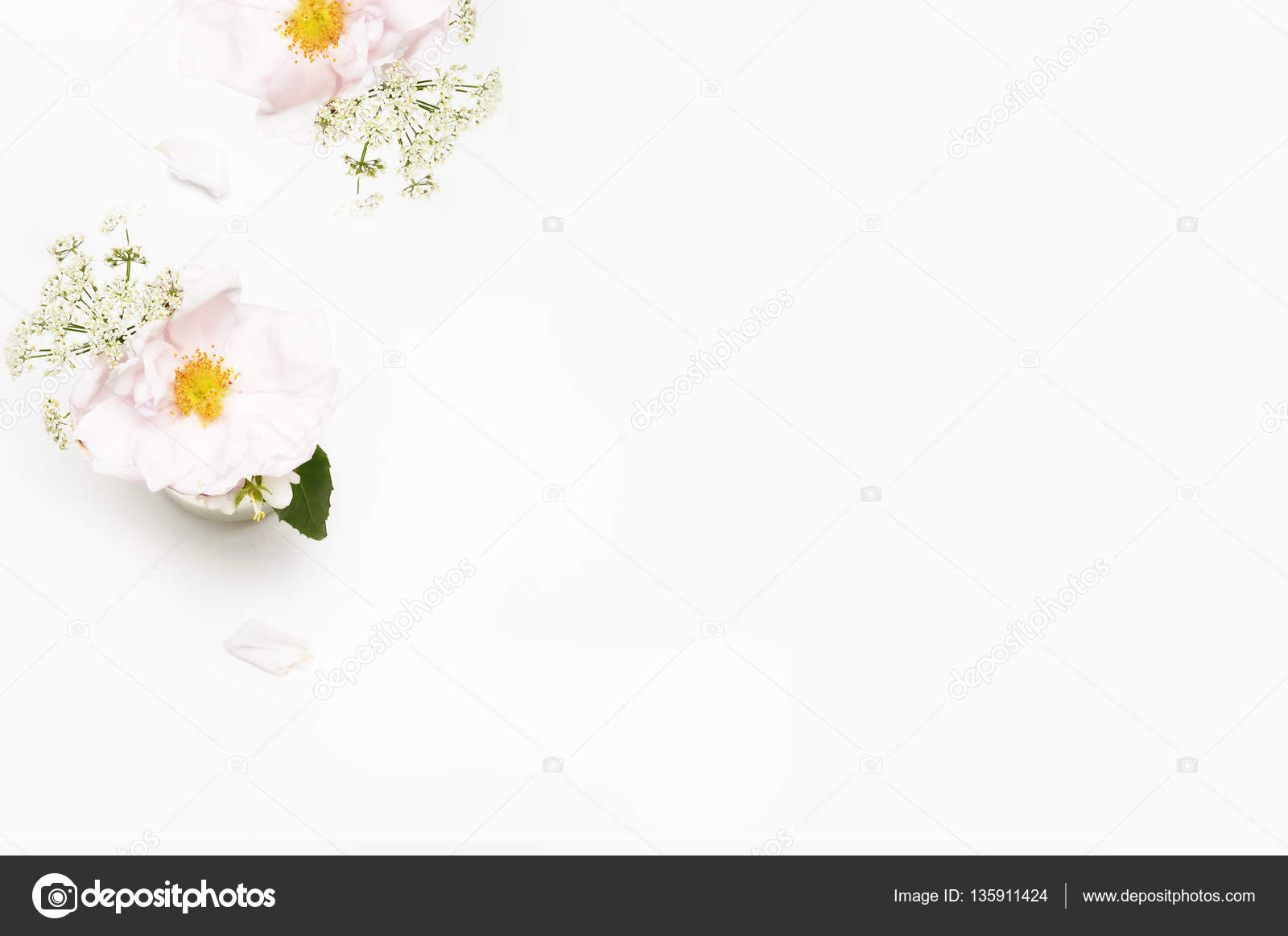 Flowers On White Background Flat Lay Mock Up Desk Beauty Stock