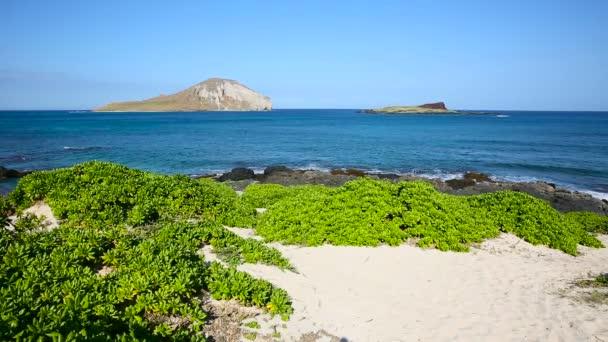 Nyúl sziget Makapuu strandon a windward Oahu Hawaii
