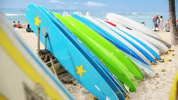 Bérelhető szörf waikiki tengerparton, hawaii