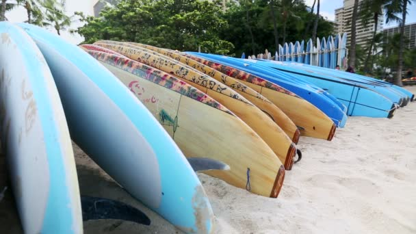 Rental surfboards at waikiki beach, hawaii