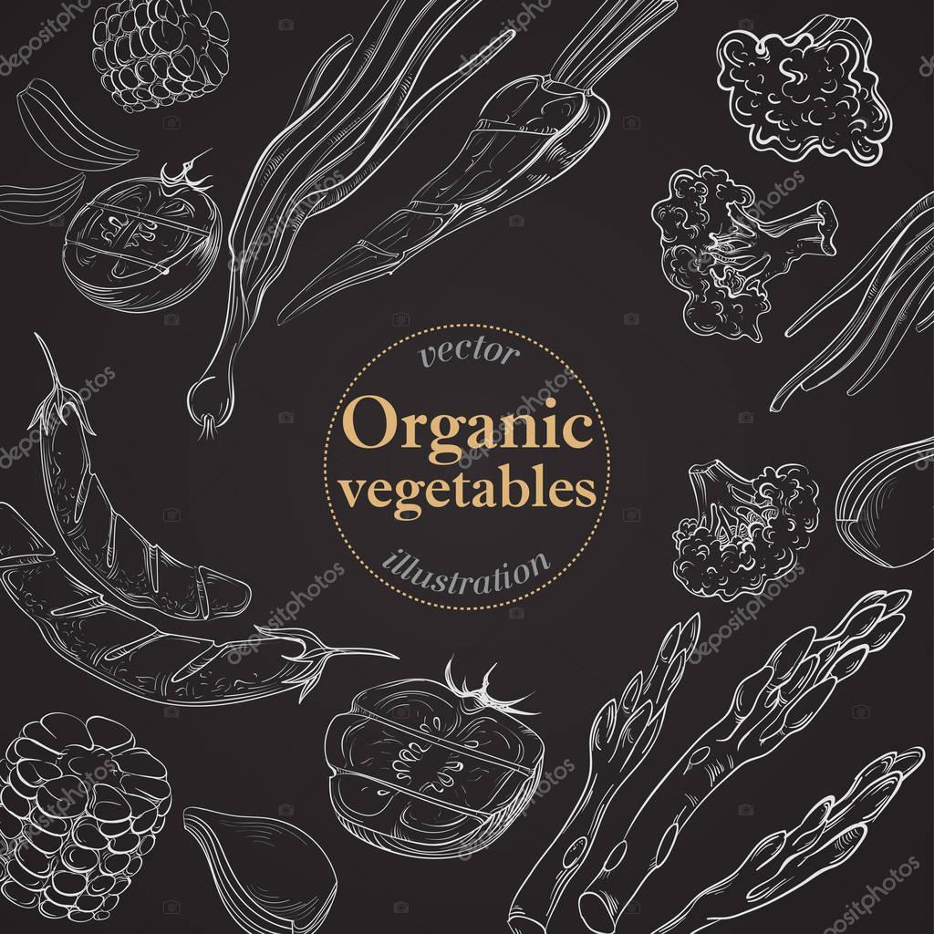 collection of hand drawn food on blackboard organic restaurant