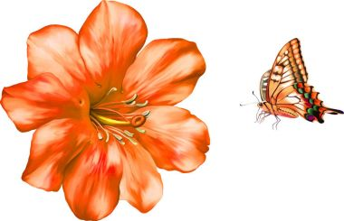 Flower and red butterfly