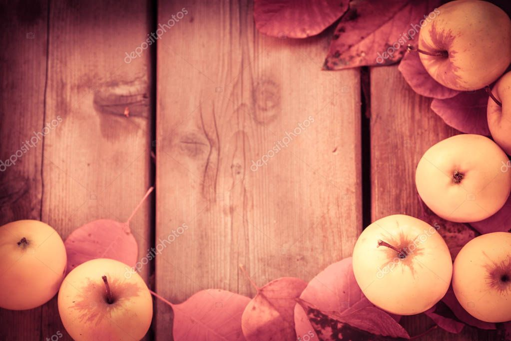Autumn background with apples