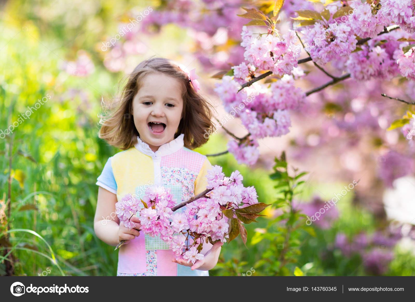 Little Girl With Cherry Blossom Stock Photo Famveldman 143760345